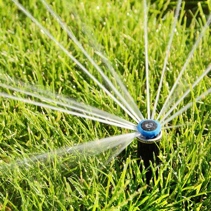Water Efficient Landscapes Gilroy CA